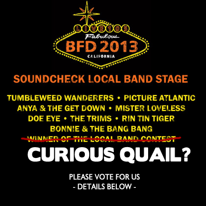 bfd2013